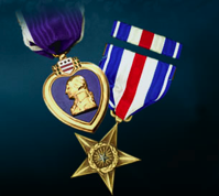 The Distinguished Flying Cross & The Purple Heart and Bronze Star