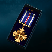 The Purple and Bronze Star